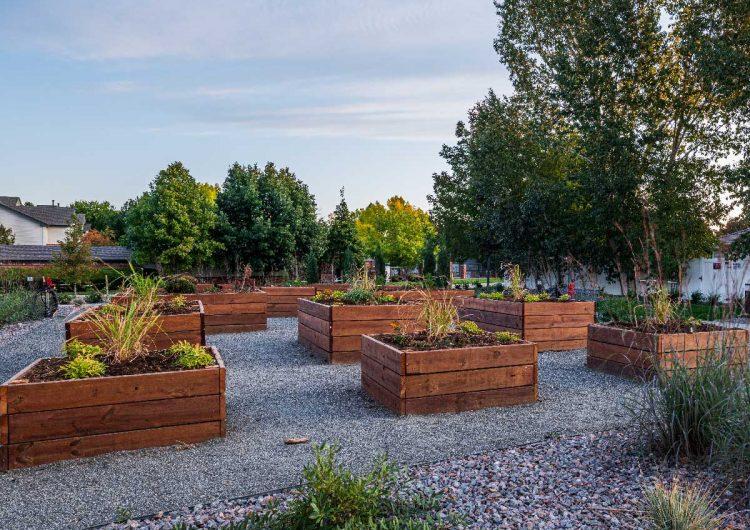 Community Garden AltaVita Independent Living Longmont, CO